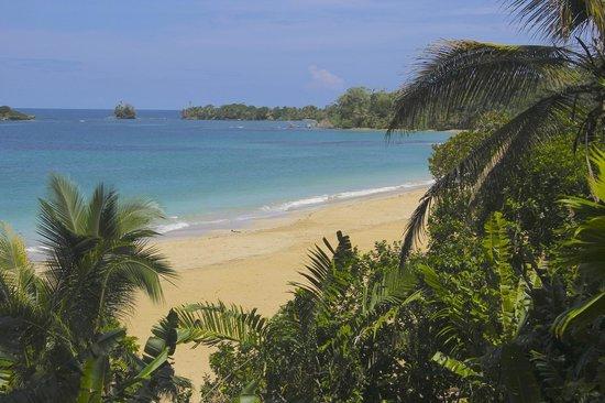 Red Frog Beach Island Resort & Spa : Beautiful beach!