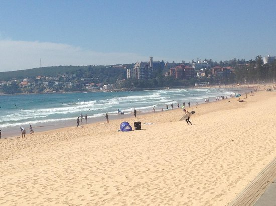 Manly Paradise Motel & Apartments: Beautiful Manly Beach