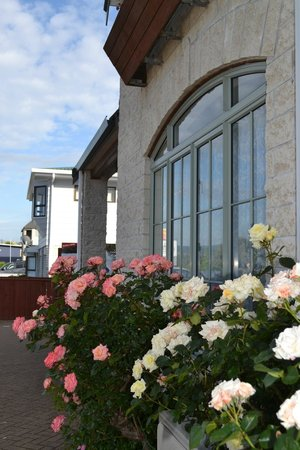 Colonial Lodge Motel: Spring Roses