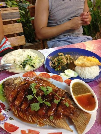 Nong ploy: Fried Fish in Thai Chilli & Basil Chicken Rice