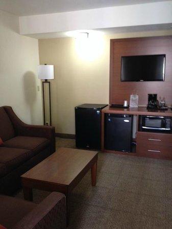Comfort Suites San Diego Miramar: Living room