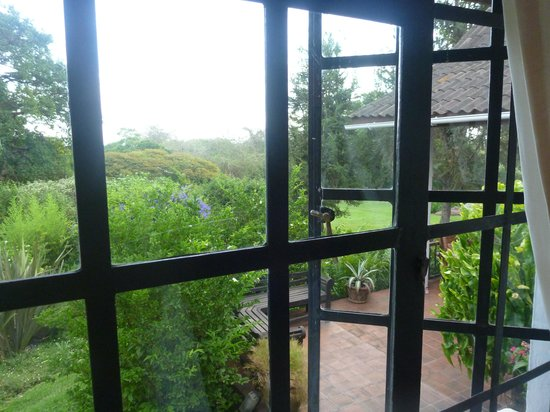 Shangazi House: View from my window
