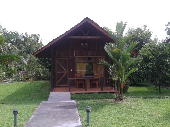 Hotel Arenal Green: Y esta es la Habitacion con la mejor vista #8