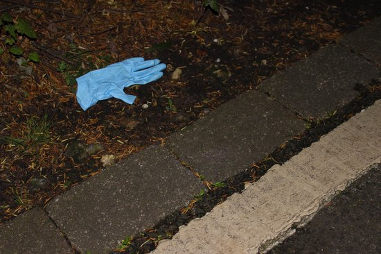 Broome Park Golf and Country Club: Used Cabin Cleaners Glove left on pathway the entire week