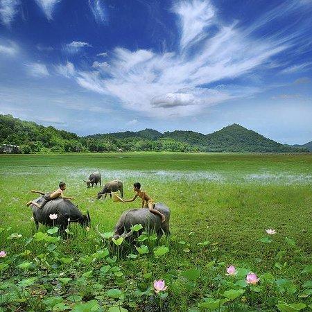 VietnamStay: Ninh Binh