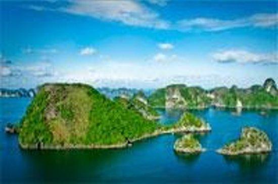 VietnamStay