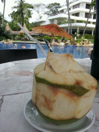 Sigi's Bar and Grill : Fresh cool young coconut