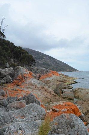 Wineglass Bay Lookout: Vue sur la Baie de Wineglass (3)