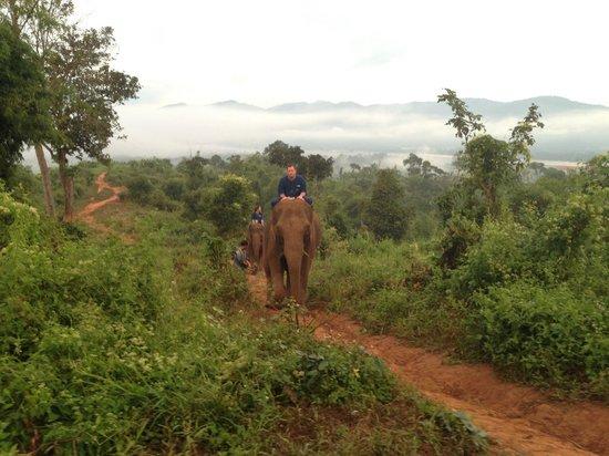 Four Seasons Tented Camp Golden Triangle: Sunrise Elephant Trek
