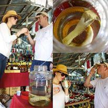 Four Seasons Tented Camp Golden Triangle : With our guide, crossed into Laos Marketplace for some Cobra Whisky. Eww. :)