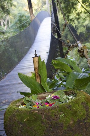Four Seasons Tented Camp Golden Triangle: The pathway.