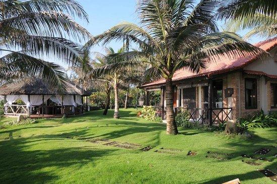 Green Organic Villas: Garden