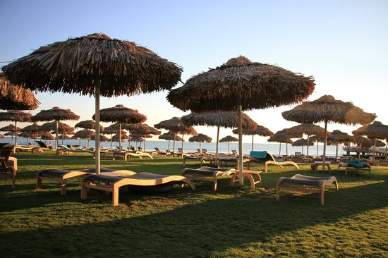 Maxx Royal Belek Golf Resort : plage de gazon et de sable