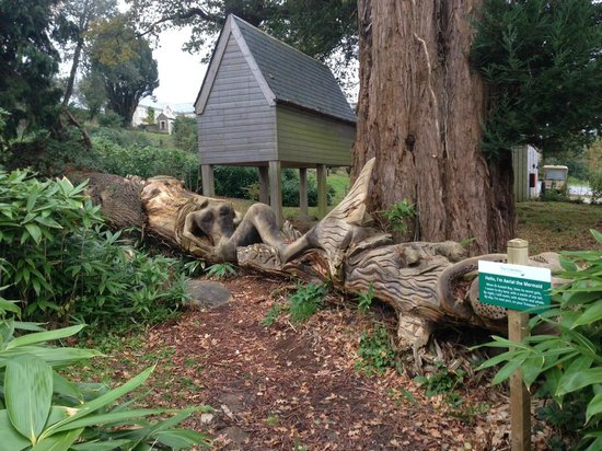 The Cornwall Hotel Spa and Estate : Carving on fallen tree in the hotel grounds