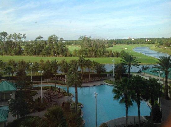 Hilton Orlando Bonnet Creek : Utsikt fra rommet over bassenget