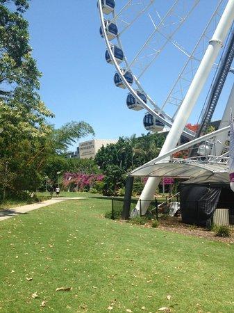 เซาธ์แบงค์ปาร์คแลนด์: La noria de Brisbane