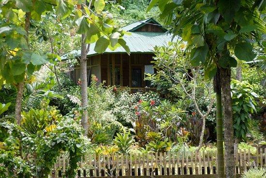 Bunaken Kuskus Resort: KusKusBungalo