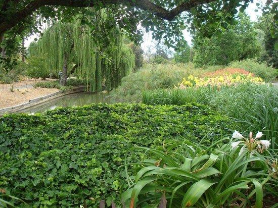 Botanic gardens picture of adelaide botanic garden for Adelaide gardens