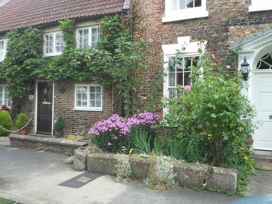 St James House: wonderful old building with beautiful rambling plants
