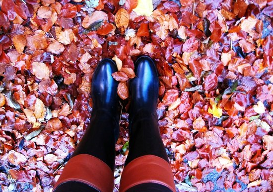 Annfield Guest House: Castillo Doune en otoño