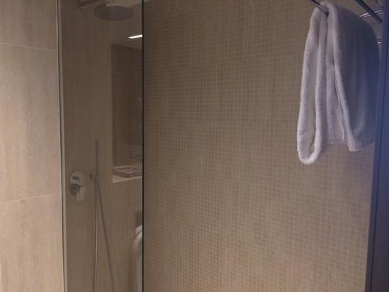 Crowne Plaza Geneva: walk in shower