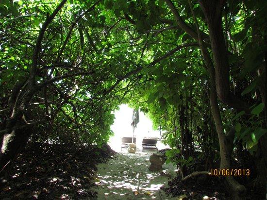 Park Hyatt Maldives Hadahaa : Вход на пляж от номера