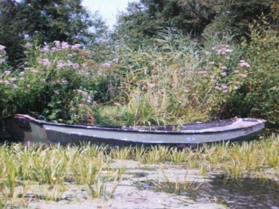 De Weerribben National Park: Deze boot komt niet ver meer.