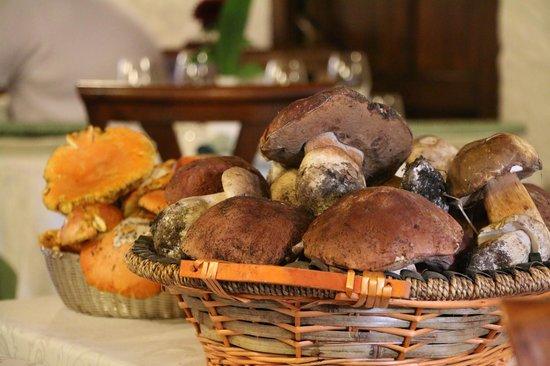Ristorante Il Pozzo: OMG fresh mushrooms SO GOOD