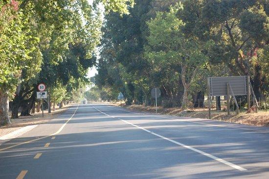 Estrada perto do Spier Hotel