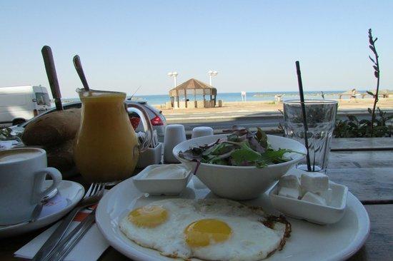 Yotvata BaYir: shake, salad, and sea