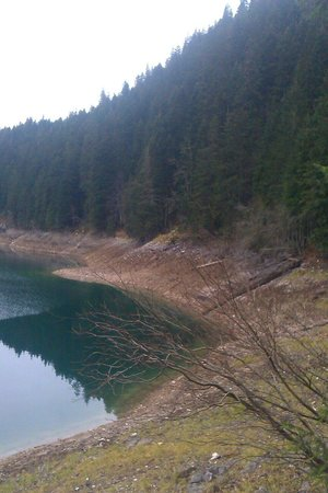 Crno Lake: Shot from a road in forest