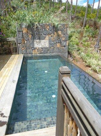 Lakaz Chamarel Exclusive Lodge: Piscine privée