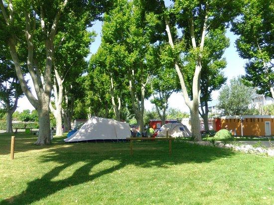 Camping Intercommunal de la Durance : espace tentes