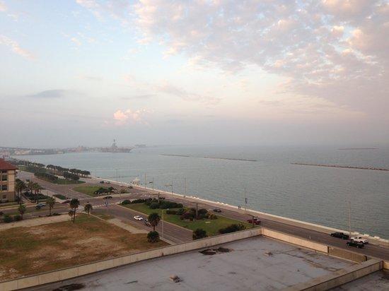 Omni Corpus Christi Hotel: 部屋からの眺めです。