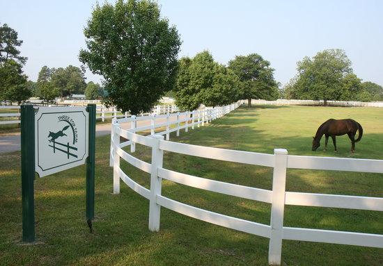 Blythewood has great equestrian activities to enjoy