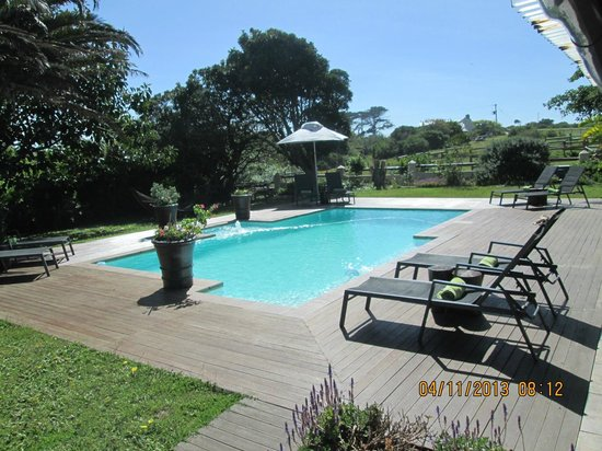 Oyster Bay Lodge: Pool and Paddock