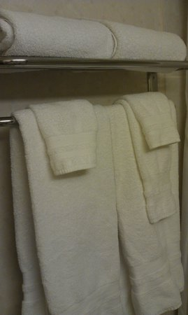 Best Western Plus Grosvenor Airport Hotel : Tidy towels