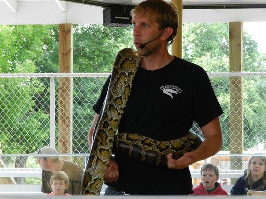 Reptile Gardens : Snake show