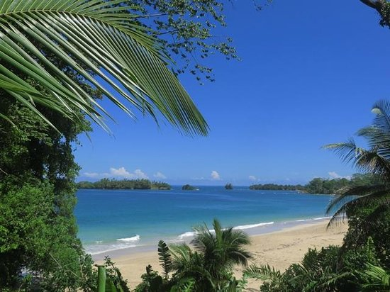 Free Spirit Oasis: Island view