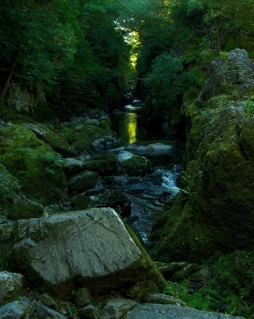 Fairy Glen Photo