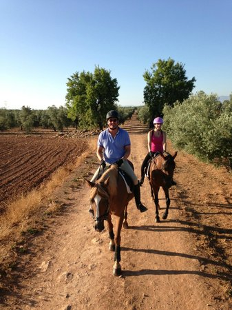 Hacienda Horses: Out on another hack