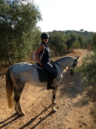 Hacienda Horses: Out on a hack