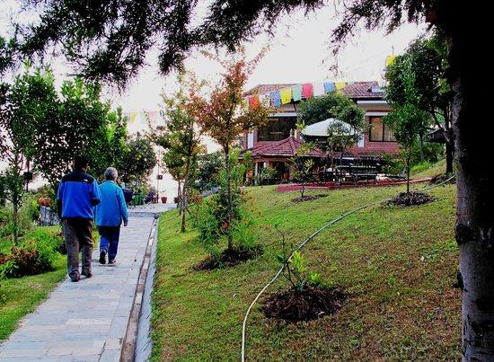 Chhahari : The resort grounds