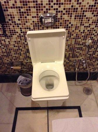 Golden Tulip Amritsar: Square toilet, Room 405
