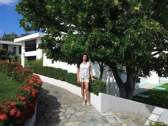 Xingo Parque Hotel: Jardins do Hotel