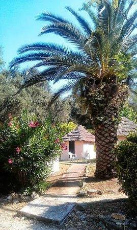 Dionysus Camping Village: bungalow