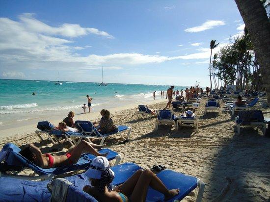 Vista Sol Punta Cana: Visão da Praia deste Hotel