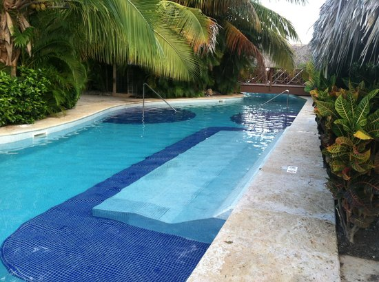 The Reserve at Paradisus Palma Real : Pool bed behind our swim up suite!