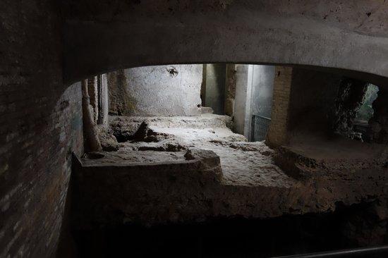 Crypta Balbi: part of original area