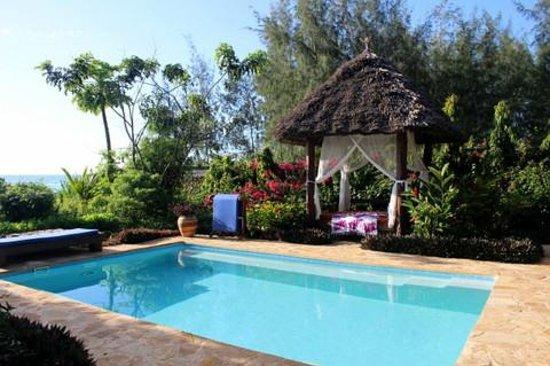 ZanziResort: Our Pool at the Villa!
